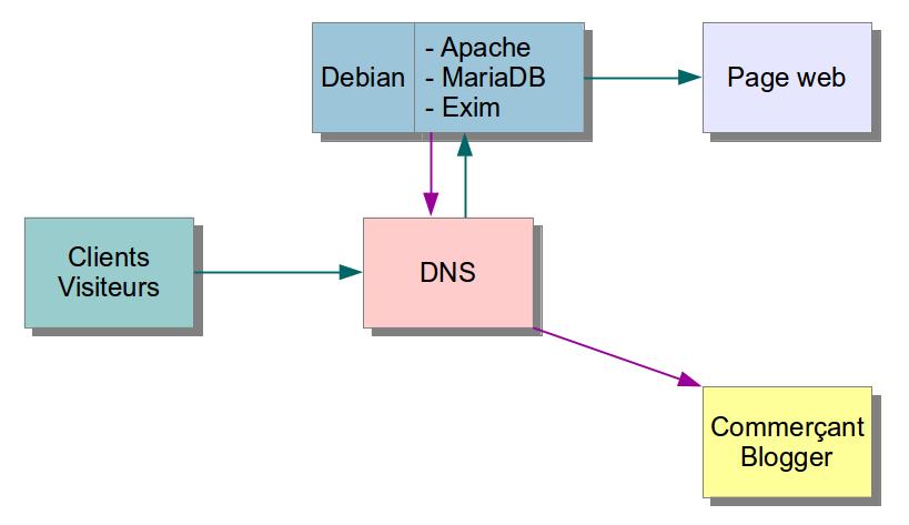schema-DNS-serveur-web